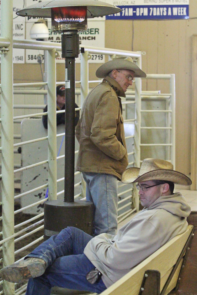 willcoxlivestockauction-IMG_0444