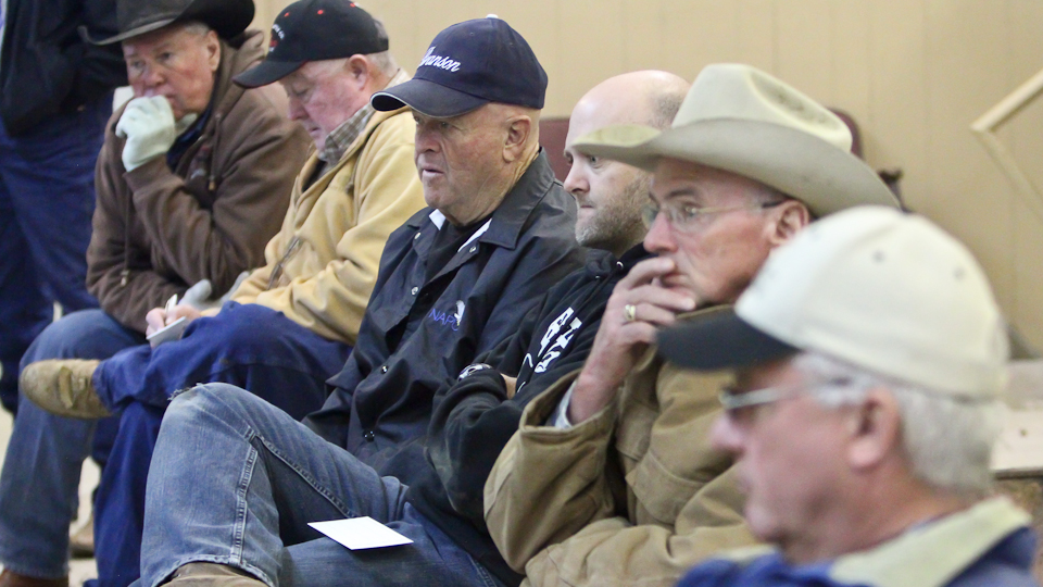 willcoxlivestockauction-IMG_0821