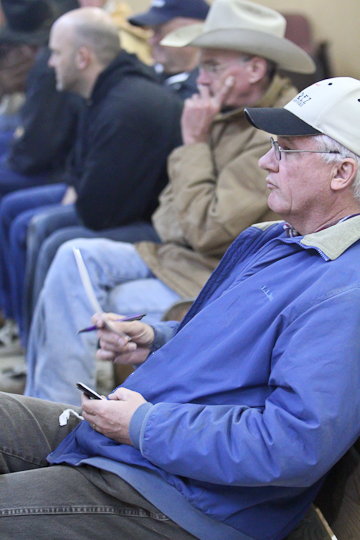 willcoxlivestockauction-IMG_0908