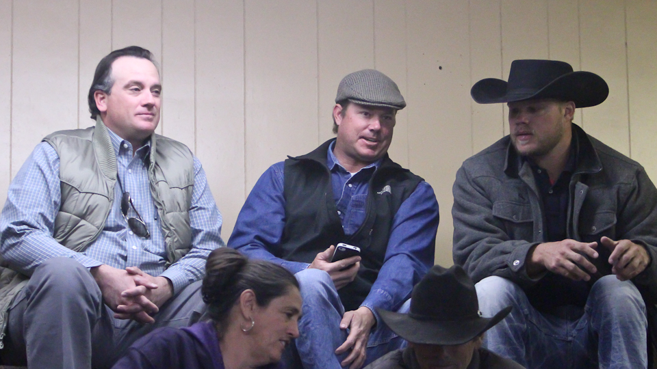 willcoxlivestockauction-IMG_1007