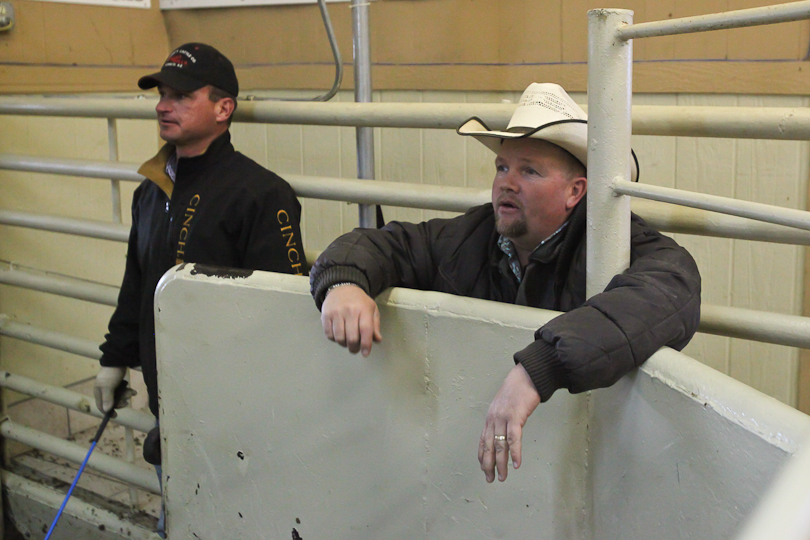willcoxlivestockauction-IMG_9008