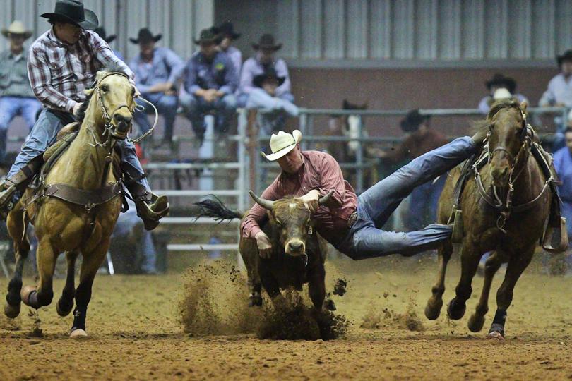 Slack Bull Dawggin San Angelo Rodeo Into The Mystic