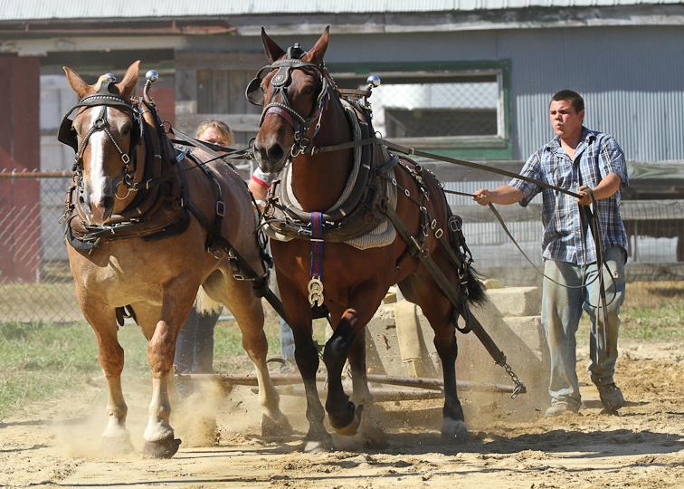 RochesterFair-HorsePull-IMG_8620