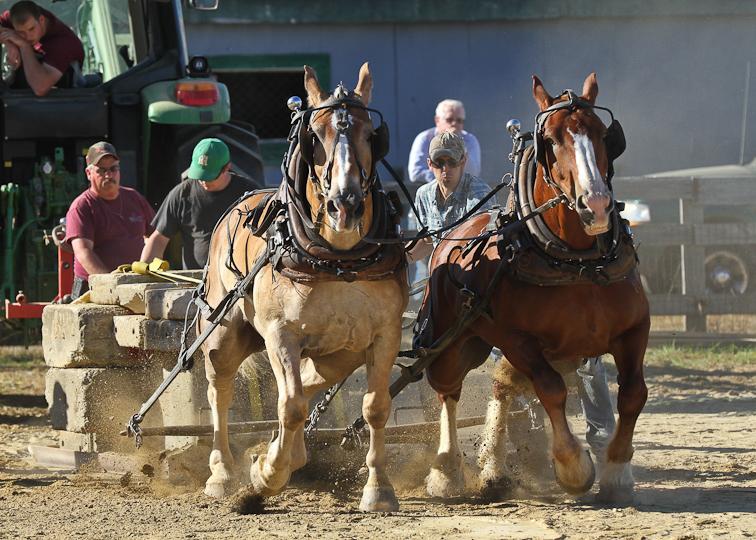 RochesterFair-HorsePull-IMG_9067