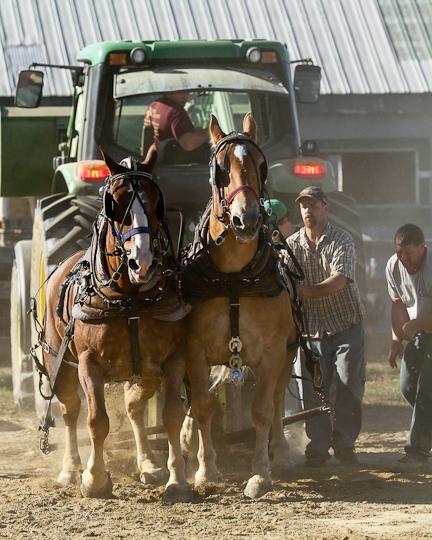 RochesterFair-HorsePull-IMG_9130