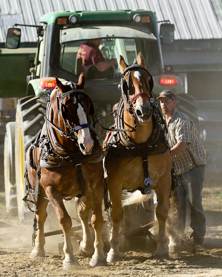 RochesterFair-HorsePull-IMG_9133