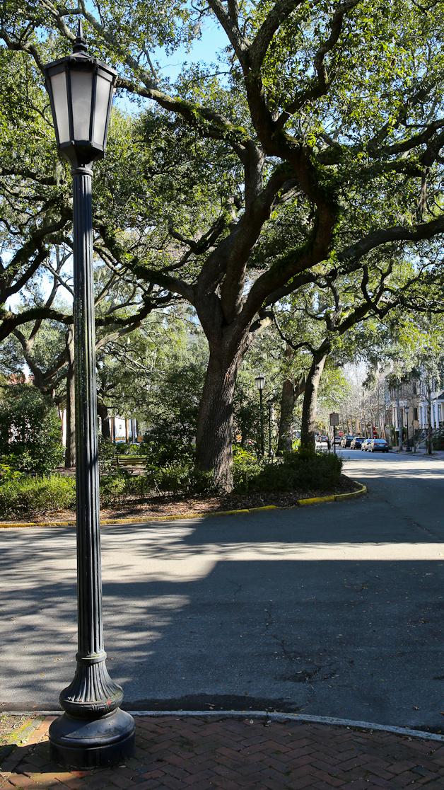 Savannah12.16.2013-6Y9A0946