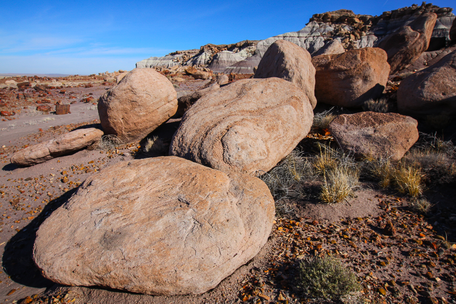 petrifiedforest12-9-20166y9a4731
