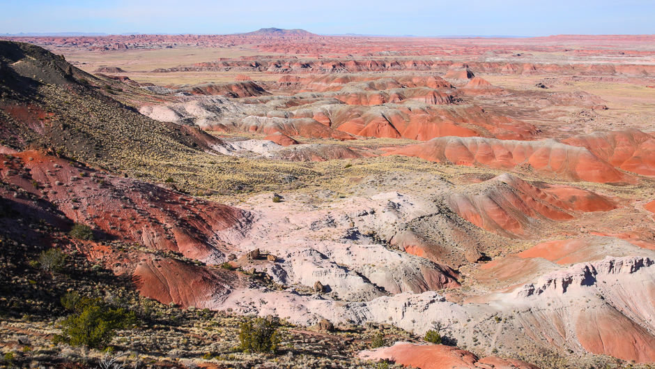 petrifiedforest12-9-20166y9a4834