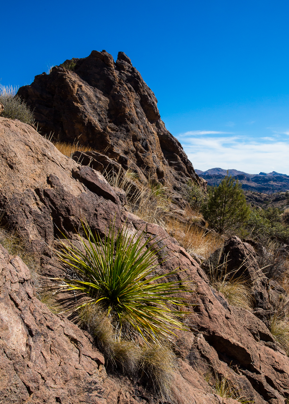 Chihuahuan Desert | Into the Mystic … Travels & Photography