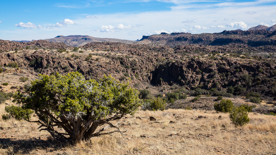 Martin Auto Museum >> Chihuahuan Desert   Into the Mystic … Travels & Photography